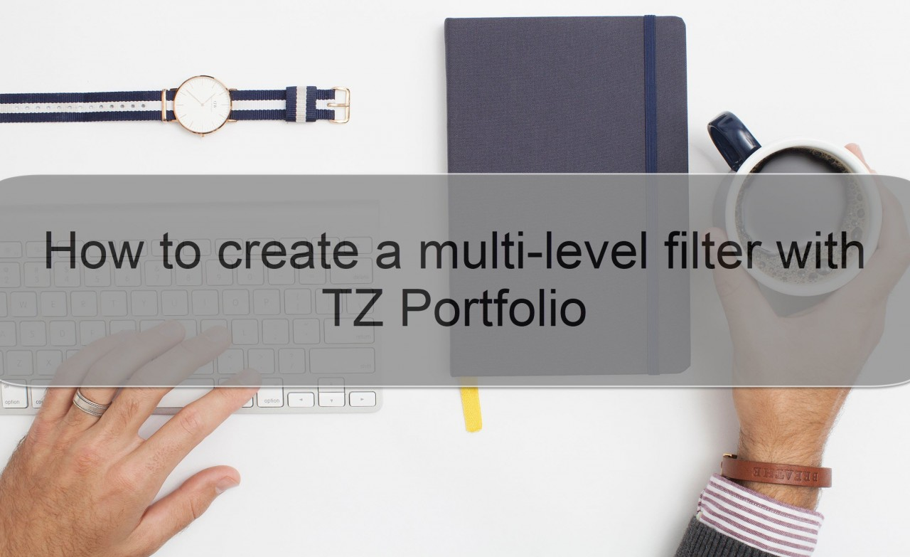How to create a multi-level filter with TZ Portfolio