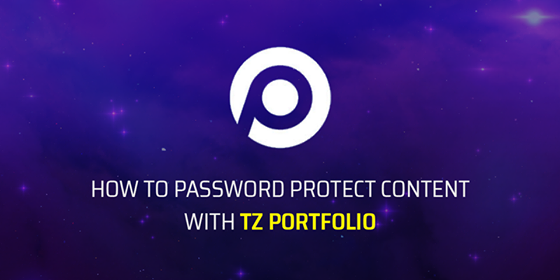 How to protect articles with TZ Portfolio
