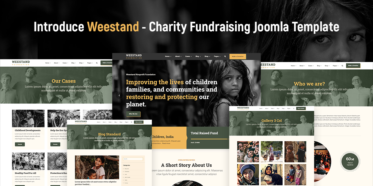 Introduce-weestand-charity-fundraising-joomla-template