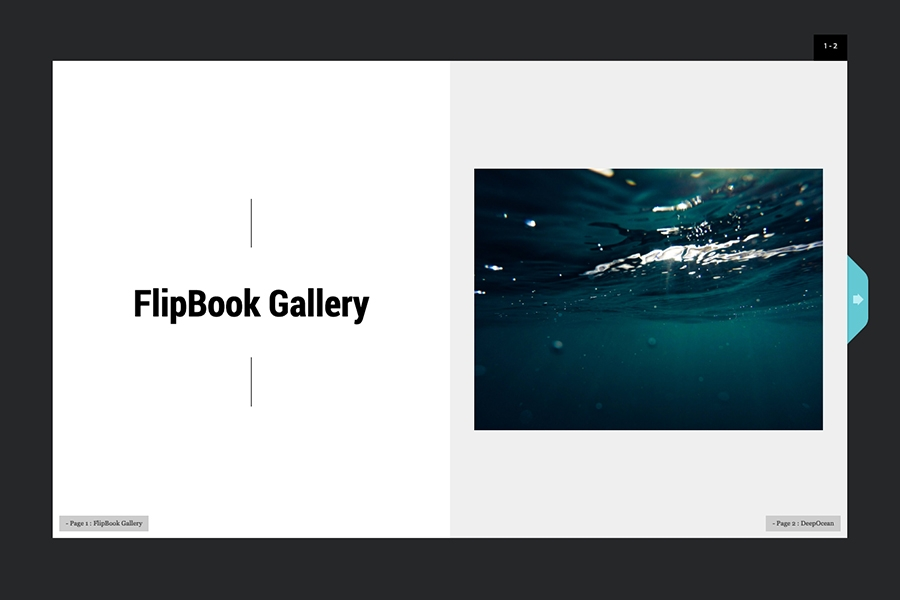 FlipBook Gallery